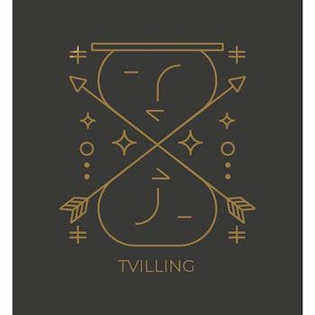 Stjärntecken - Tvilling ( Konsttryck / Poster )