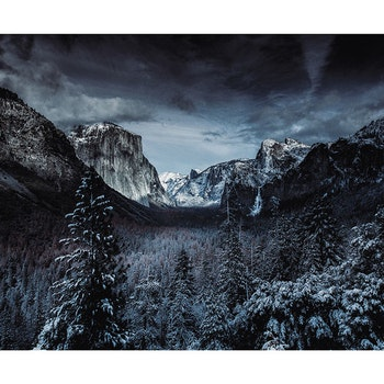 Poster/Konsttryck - Vinterlandskap