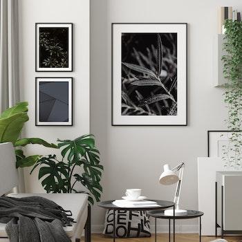 Poster/Konsttryck - Små Blad