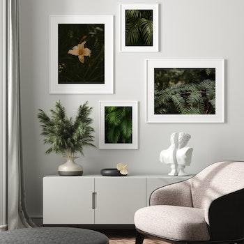 Poster/Konsttryck - Mörkgröna blad