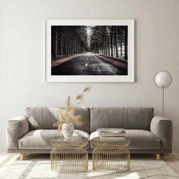 Poster/Konsttryck - skogsväg