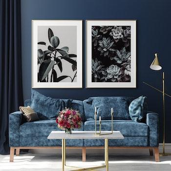 Poster/Konsttryck - Botanisk