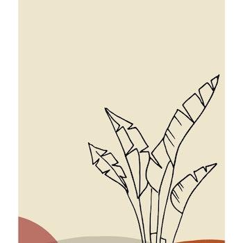 Grafisk poster - Växtform