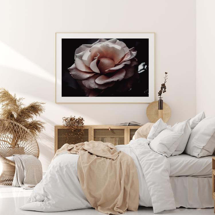 Poster/Konsttryck - Rosen