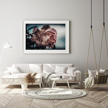 Poster/Konsttryck - Dov Ros