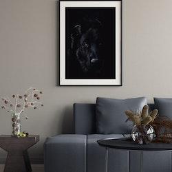Poster/Konsttryck - Hund