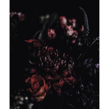 Poster/Konsttryck - Bukett
