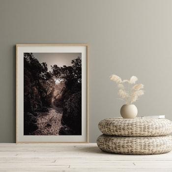 Poster/Konsttryck - Solsken