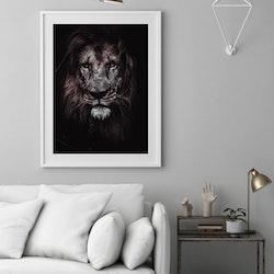 Poster Lejonansikte - Svartvit