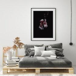 Poster/Konsttryck - Blomma i mörker