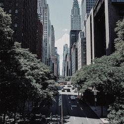 Poster/Konsttryck - New York