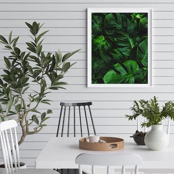 Poster/Konsttryck - Monstera i grönt
