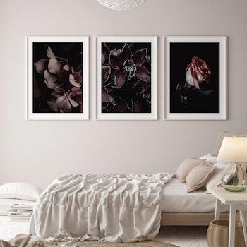 Poster/Konsttryck - Burgundy
