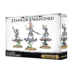 Arcanites Tzaangor Enlightened