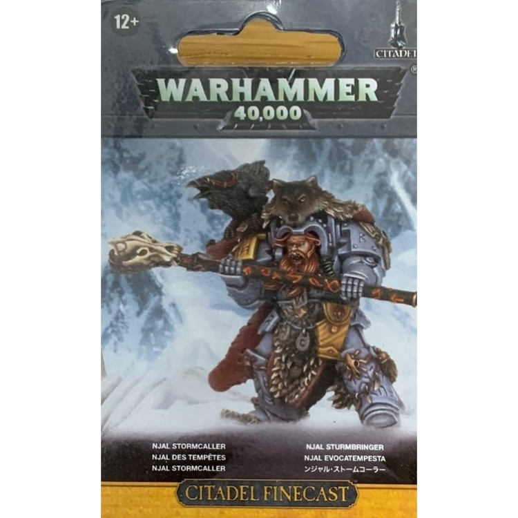 Space Wolves Njal Stormcaller in Terminator Armour