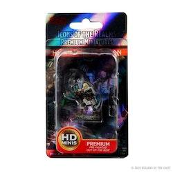 D&D Human barbarian HD