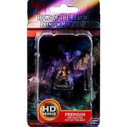 D&D HaLfling Rogue HD