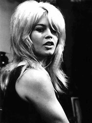 BARDOT, Artwood