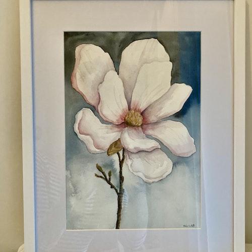 Magnoliablomma - Originalmålning