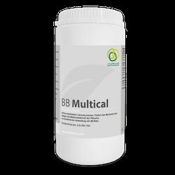 BB Multical