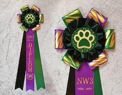 NW3 Diplom