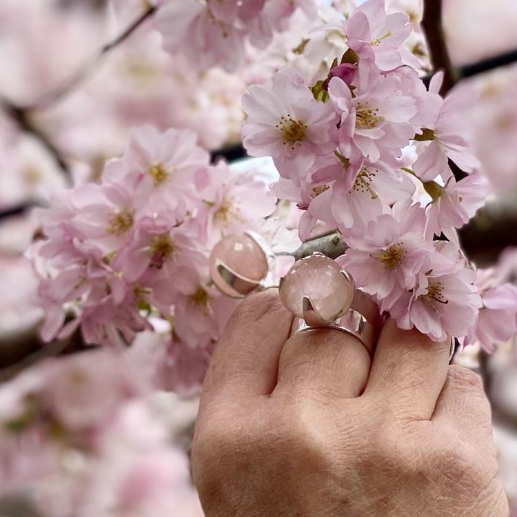 Hand med silverringar med rosenkvarts och körsbärsblom