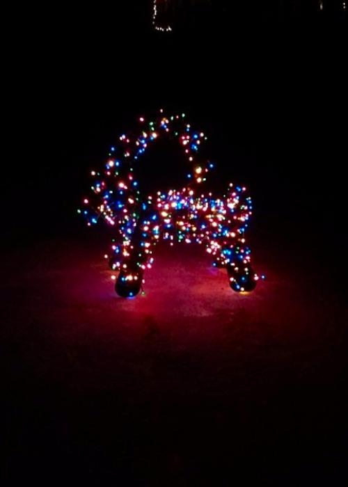 Julbock med ledslinga ljusslinga