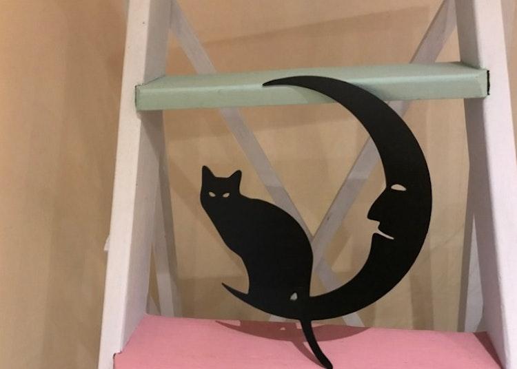Sittande katt på en måne i plåt på en stege.