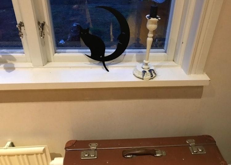 Sittande katt på en måne i plåt framför ett fönster.