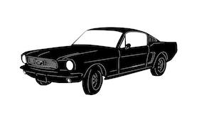 Mustang -66
