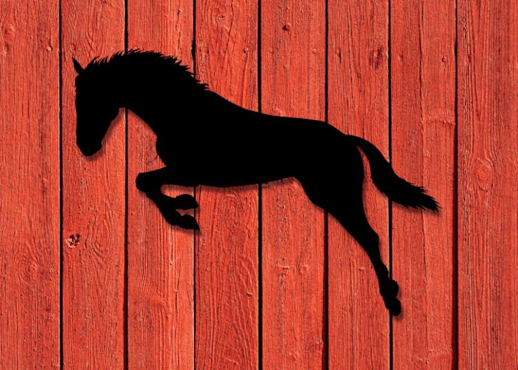 Siluett av hoppande häst på husfasad.