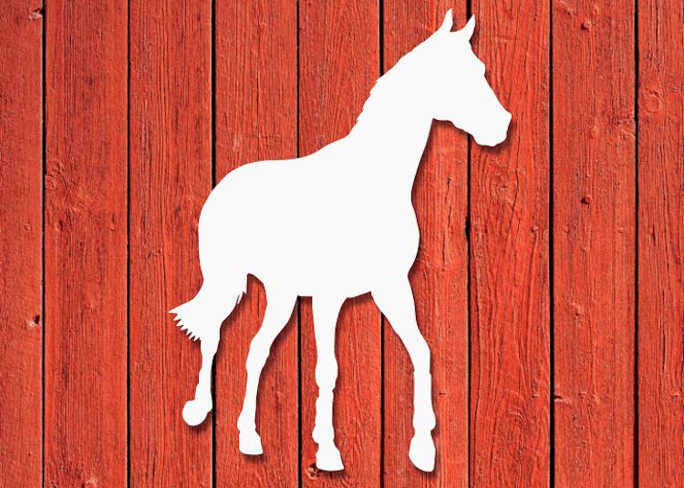 Vit fasaddekor i siluett av en häst.