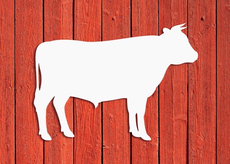 Vit tjursiluett på röd vägg.