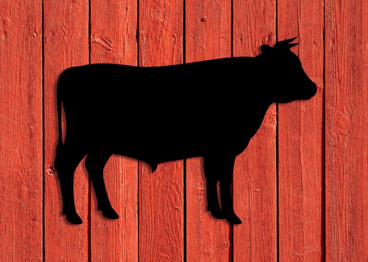 Svart siluett av tjur på röd husvägg.