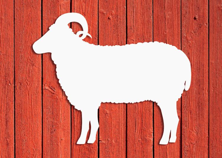 Siluett av ett får på röd husvägg.