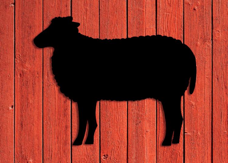 Svart siluett av ett får mot röd trävägg.