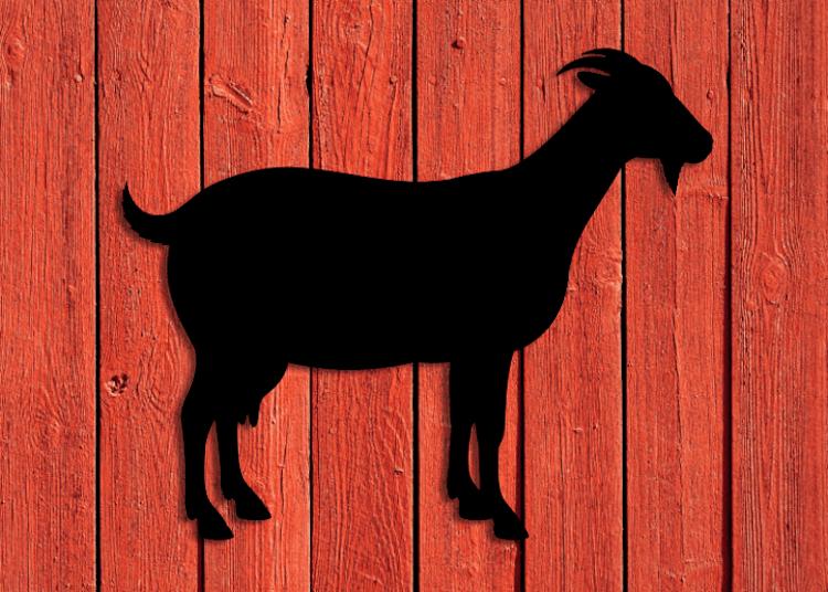 Svart fasaddekor föreställande en get monterad på röd träfasad.