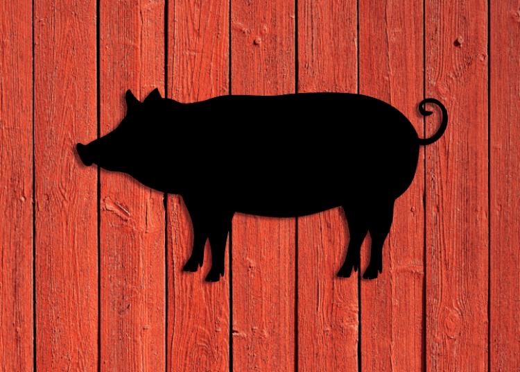 Svart siluett av en gris mot röd träfasad.