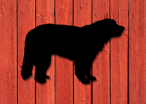 Fasaddekor Hund, Leonberger