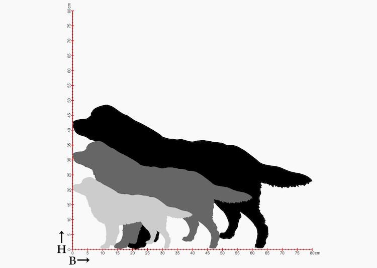 3st olika storlekar på siluetter i plåt av hundrasen Berner Sennen.