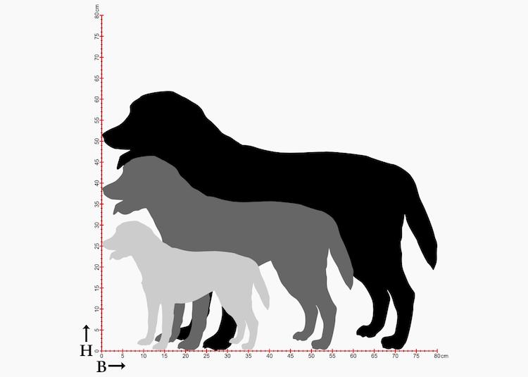 Hundsiluetter i 3 storlekar, av hunden Labrador.
