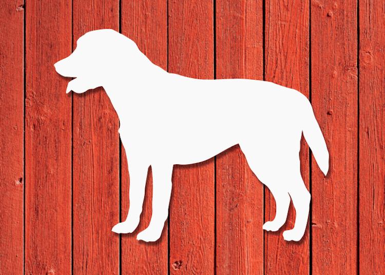 Vit labradorsiluett på röd trävägg.