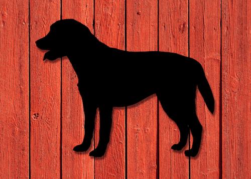 Fasaddekor Hund, Labrador