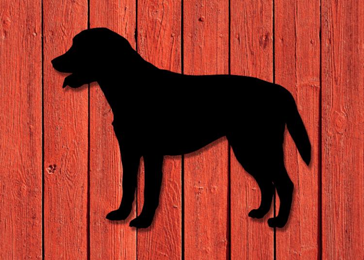 Siluett i plåt av en Labrador, för fasaden.