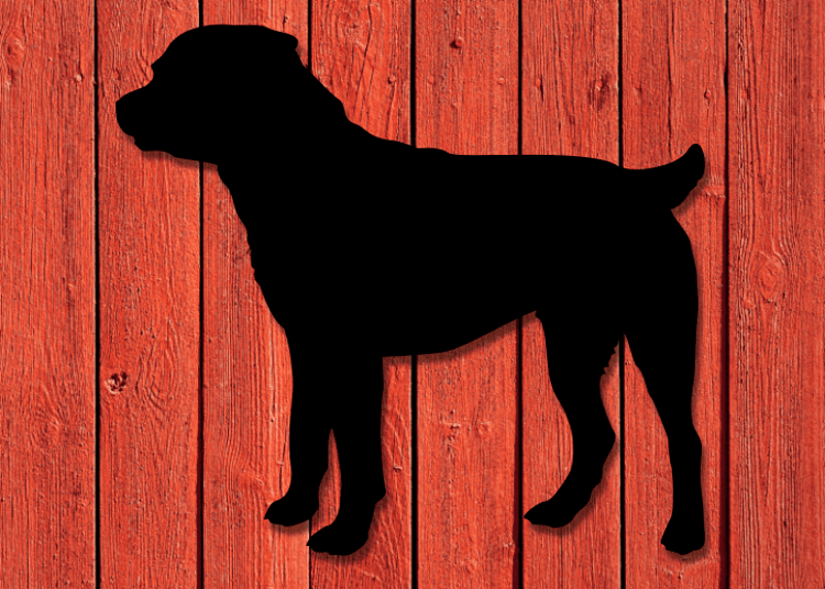 Svartlackerad siluett i plåt av en Rottweiler på en röd husvägg.