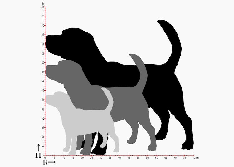 Beaglesiluett i 3 olika storlekar.