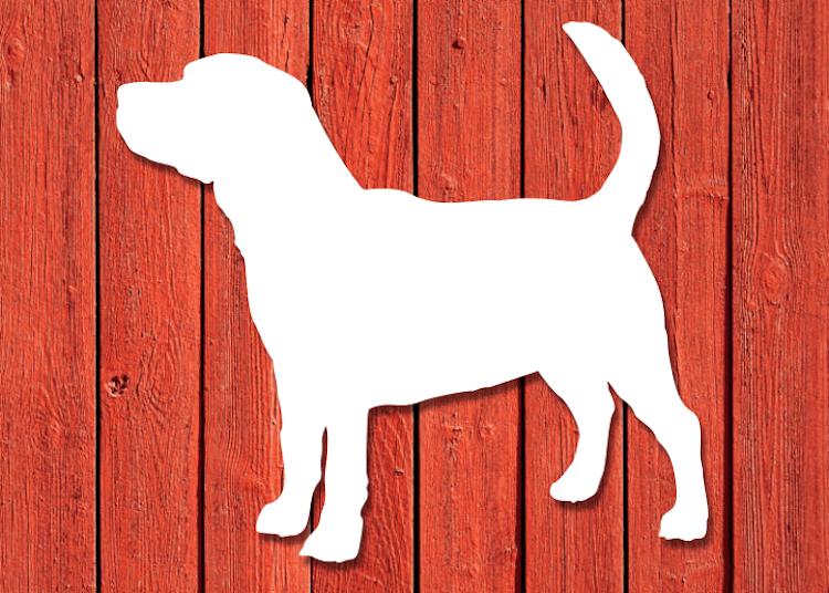 Vit hundsiluett av rasen Beagle, på röd husvägg.