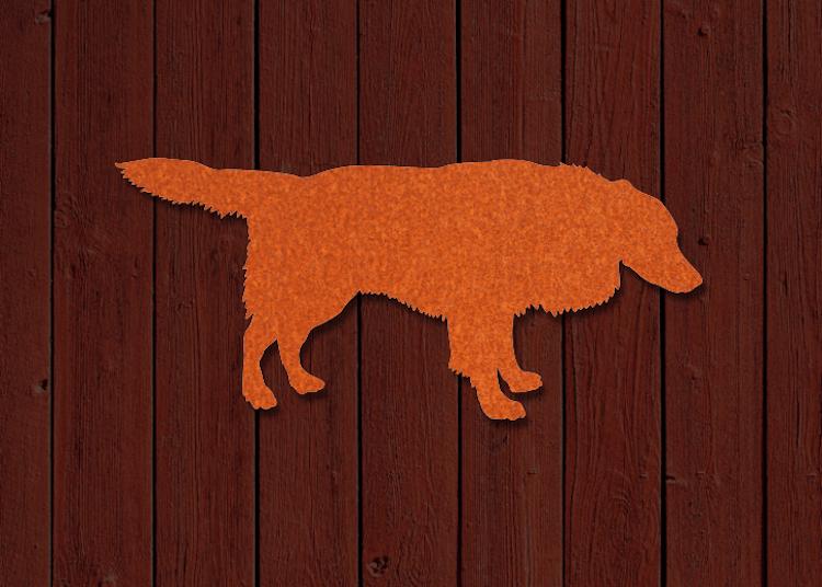 Hund Border Collie i snygg orangeröd cortenplåt på mörk träfasad.