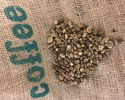 Colombia Washed - Finca La Ilusión - Long Fermentation, 1 kg