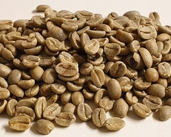 Ethiopia Natural Yirgacheffe Gr1, Konga, Traceability, 1kg